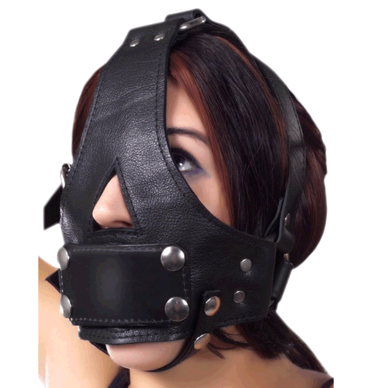 Bishop Head Harness with Removable Gag